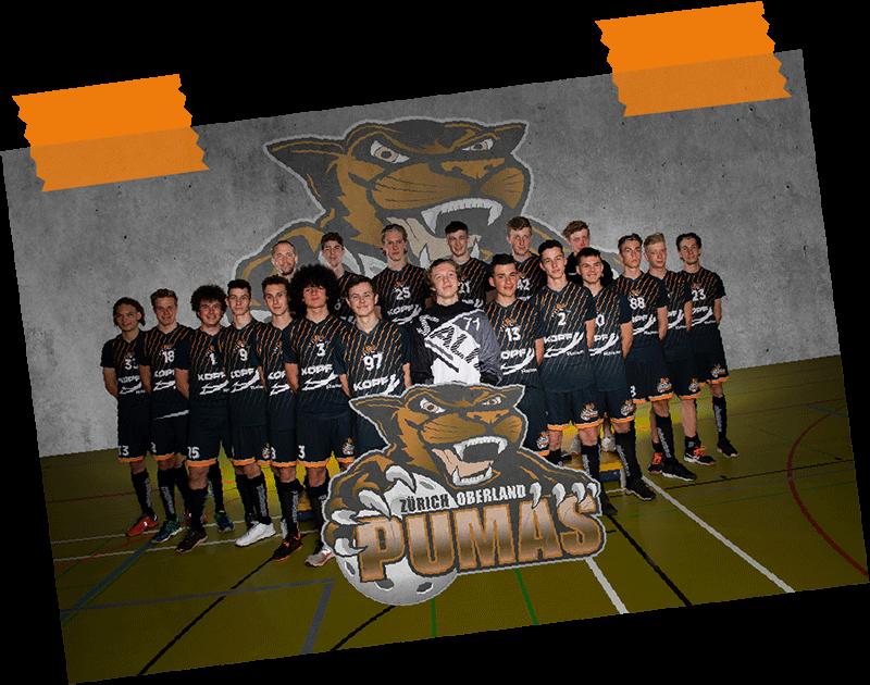 Pumas_Team